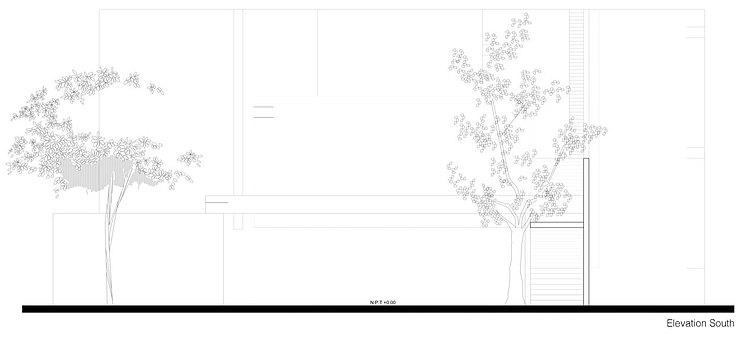 House Among Trees by Muñoz Arquitectos Asociados
