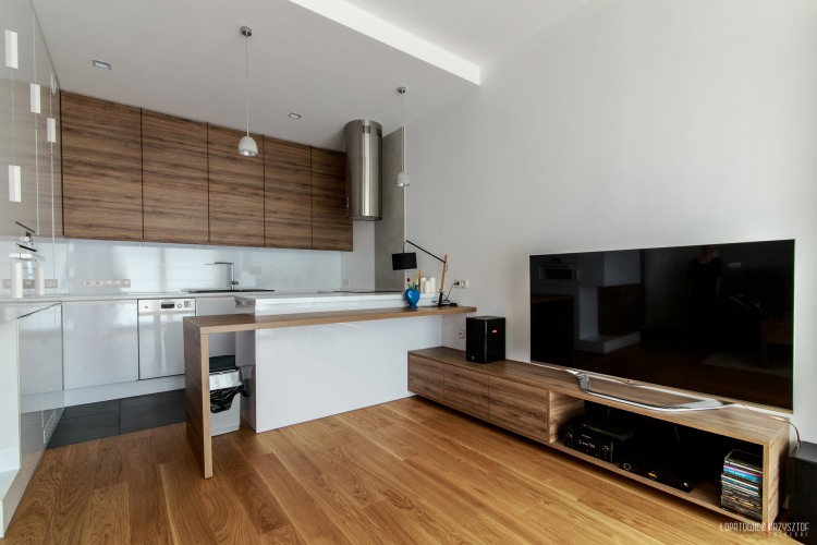 Modern Apartment by SNCE Studio