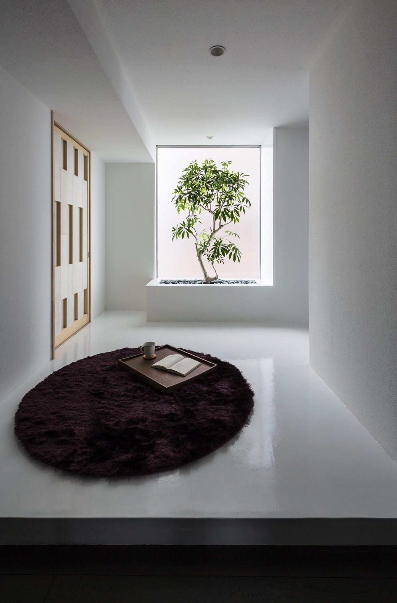 001 Complex Form Kouichi Kimura Architects Homeadore