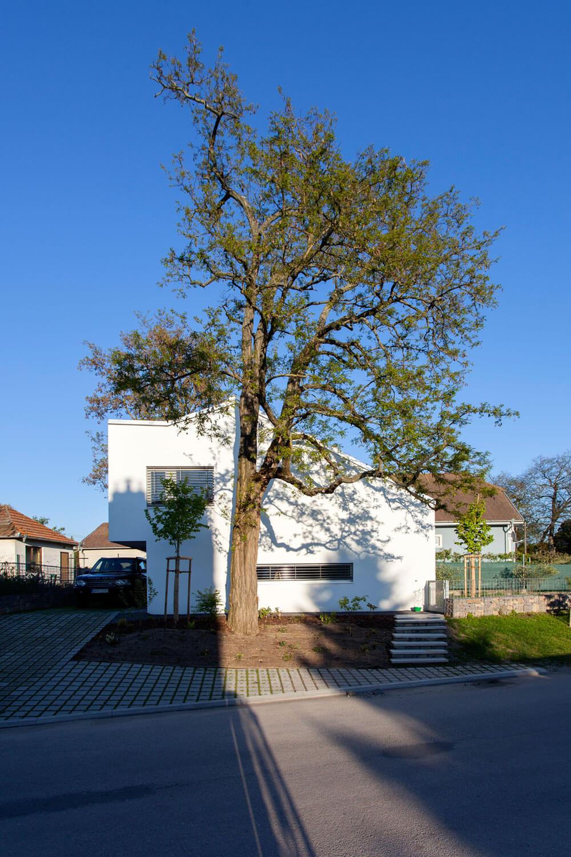 Residence in Ve?k� �?any by ?ercel ?vec Design
