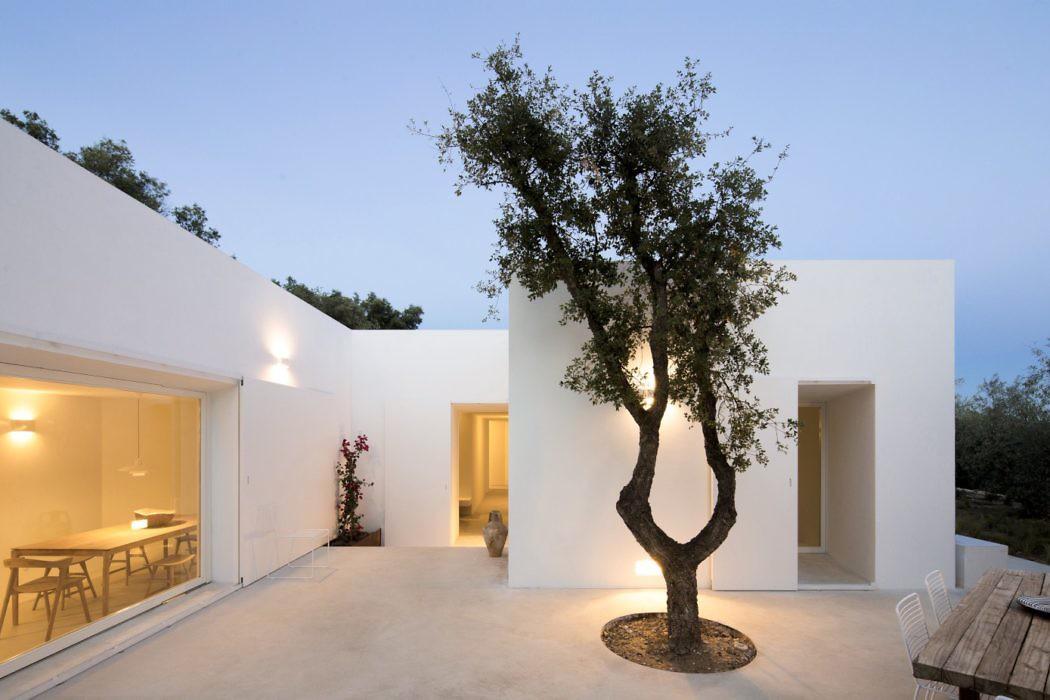 Casa Luum by Pedro Domingos Arquitectos