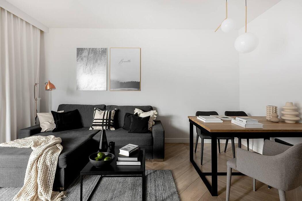 PS Apartment by MO Architekci